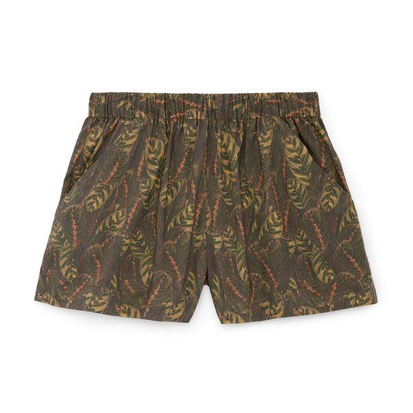 MATIN Leaf-Print Holiday Shorts