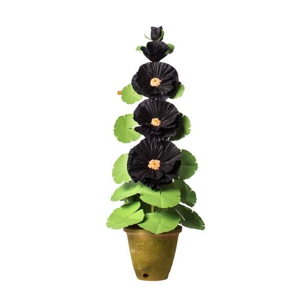 The Green Vase Hollyhock Plant