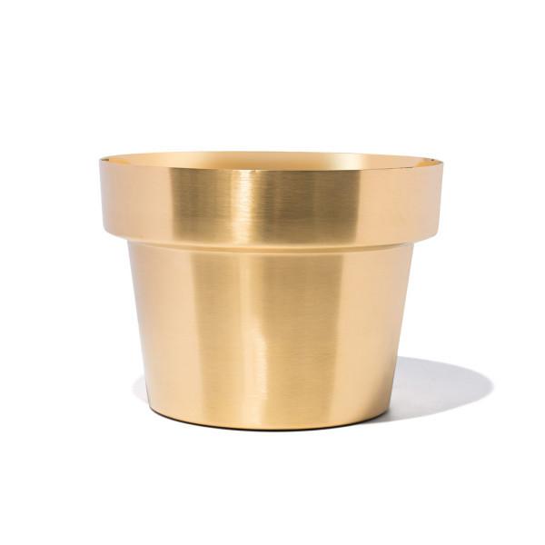 SKULTUNA Herb Pot, Brushed Brass