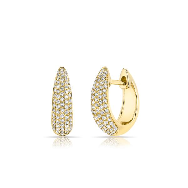 ANNE SISTERON Bold Huggie Earrings