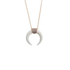 Double Bone Horn Necklace