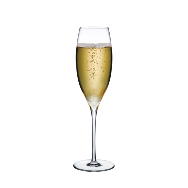 Nude Glass  Dimple Champagne Glass, Set of 2